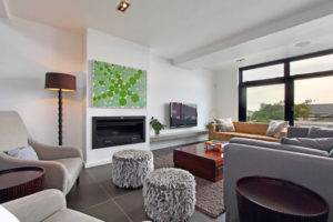 Green Point Villa : cape-town-green-point-rental-2beds12